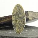 سنگ فسیل سیلوملان